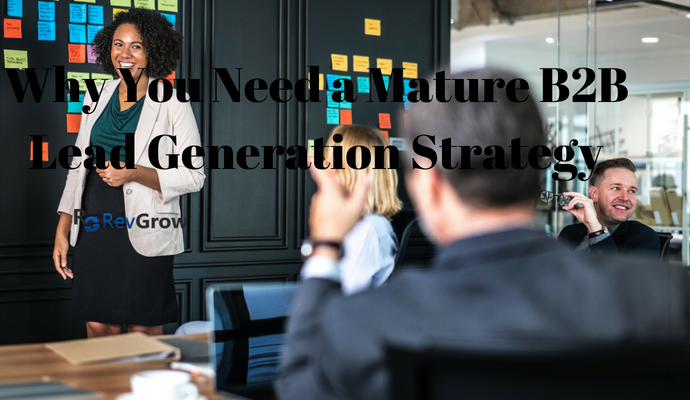 why-you-need-a-mature-B2B-lead-generation-strategy-RevGrow